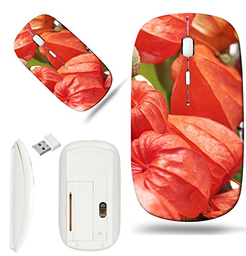 Luxlady Wireless Mouse White Base Travel 2.4G Wireless Mice with USB Receiver, 1000 DPI for notebook, pc, laptop, macdesign IMAGE ID: 23055119 Chinese lantern and acorns with autumn leaves