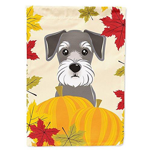 - Caroline's Treasures BB2012GF Schnauzer Thanksgiving Garden Flag, Small, Multicolor