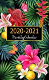 """2020 - 2021 Monthly Calendar: Two-Year Monthly Pocket Planner: 24- Month Calendar, Password Log, Phone Book Size: 4.0"""" x 6.5"""" With Black Tropical ... 2020 - Dec 2021 (monthly planner pocket size)"""