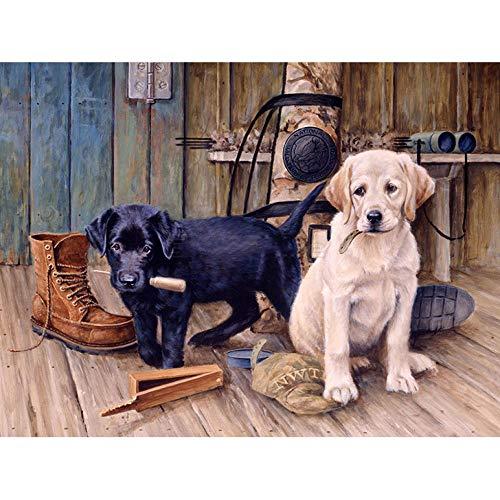 Diy Pintura Al Oleo Perro Y Zapato Pintura Al Oleo Kit Lienzos Ninos Y Principiantes Acrilicas Cuadros Manualidades Decoracion Regalo