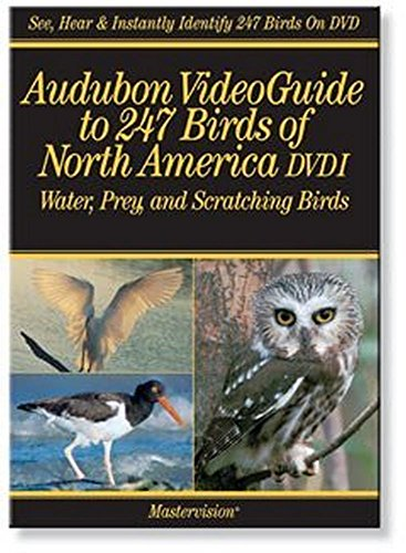 (Audubon's VideoGuide to Birds of North America DVD I Water, Prey and Scratching Birds)