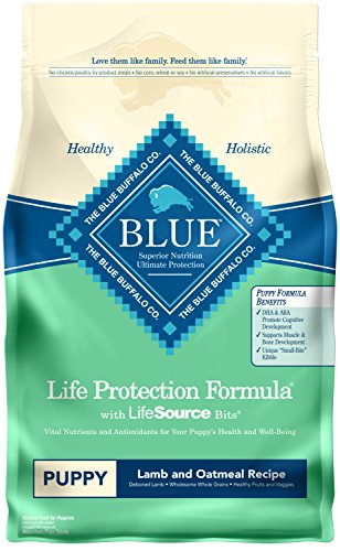 Blue Buffalo Life Protection Formula Puppy Dog Food - Natural Dry Dog Food for Puppies - Lamb and Oatmeal - 6 lb. Bag