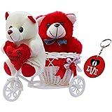 Sky Trends Romantic Valentine Love Couple Teddy Basket Cycle Valentine Romantic Teddyss Bears Gifts for Wife Girlfriend Boyfriend Fiance DSCS006