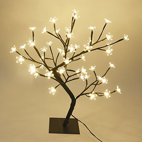ossom Bonsai Tree,Warm White ()