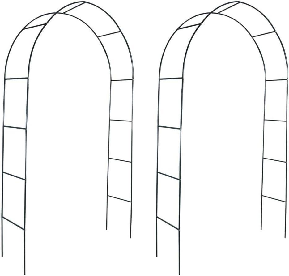 Nishore Arcos de Jardín para Plantas Trepadoras 2 Unidades Material de Hierro 140 x 39 x 240 cm (Verde Oscuro)