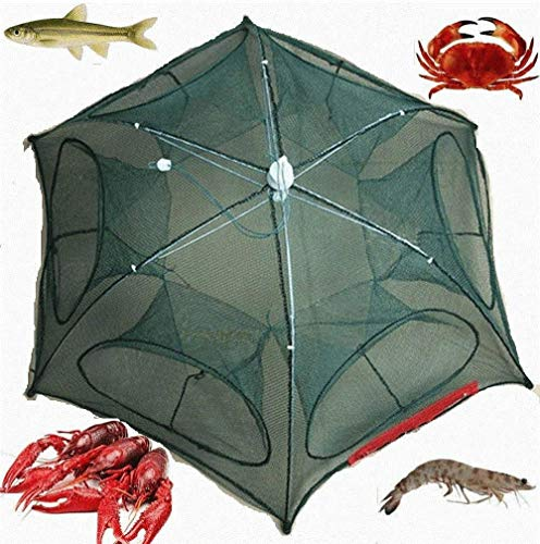 g Bait Foldable Net Trap Cast Dip Cage Crab Fish Minnow Crawdad Shrimp ()