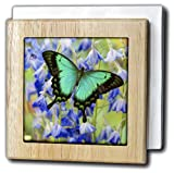3dRose nh_228337_1 ''Sea green Swallowtail Butterfly Papilio'' Tile Napkin Holder, 6'', Natural
