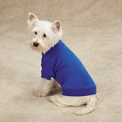 Zack & Zoey Basic Tee Shirt for Dogs, 16'' Medium, Blue by Zack & Zoey (Image #1)