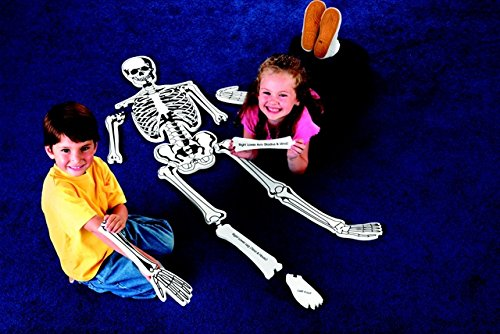 Learning Resources 082177 Skeleton Floor Puzzle44; Foam ()