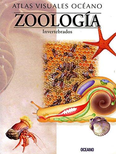 Descargar Libro Atl.visual Zoologia-invertebrados: Obra A Todo Color, De Fácil Consulta Y Gran Valor Didáctico Equipo Editorial