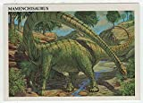 Mamenchisaurus - Dinosaurs: The Mesozoic Era (Trading Card) # 26 - Redstone Marketing 1993 Mint