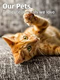 Our Pets - The cute animals we love