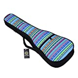 HOT SEAL 10MM Sponge Padding Durable Colorful ukulele Case Bag with Storage (21 in, Bohemia NO.2)