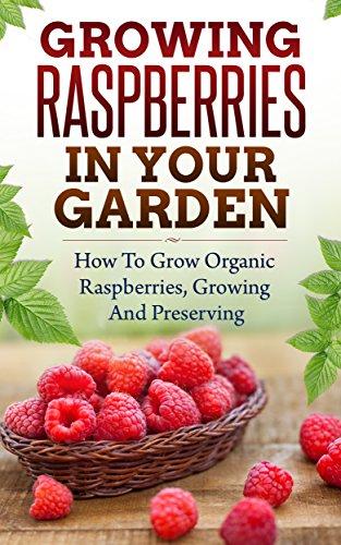 (Growing Raspberries In Your Garden - How To Grow Organic Raspberries, Growing and Preserving: Canning, Preserving Berries, Backyard Berries, Square Foot Gardening, Square Foot, Own Berries, Raspberry)