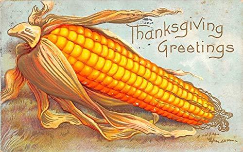 (Thanksgiving Greetings Poughkeepsie, New York Postcard )
