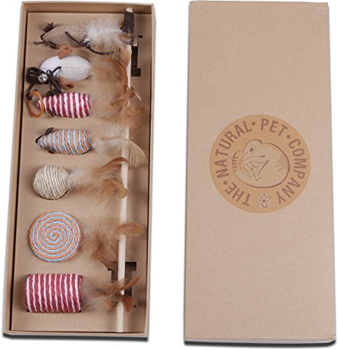 The Natural Pet Company Cat Toys Collection in Gift Box 51RBwyN9fkL
