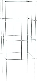 """product image for Glamos Wire Products 701642 16"""" X 42"""" Square Heavy Duty Plant Support"""