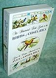 Guia ilustrada de las aves de costa rica. illustrated guide to the birds of costa rica