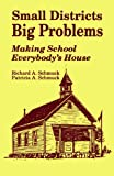 img - for Small Districts, Big Problems: Making School Everybody s House (Wiley Series in Probability and) book / textbook / text book