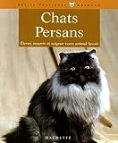 Les Chats persan