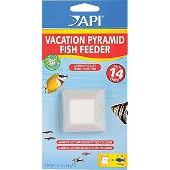 Api vacation pyramid fish feeder 14 day 1 2 for Automatic fish feeder walmart