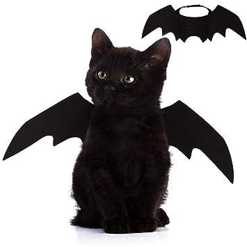 Amazon.com: Alas de murciélago para mascotas de Nigua, para ...