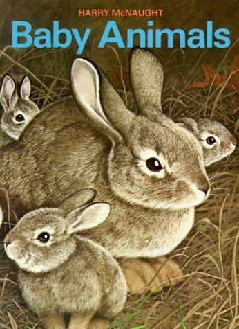 Baby Animals (Board Books)