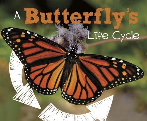 A Butterfly's Life Cycle (Pebble Plus: Explore Life Cycles)
