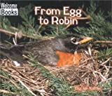 From Egg to Robin, Jan Kottke, 0516233084