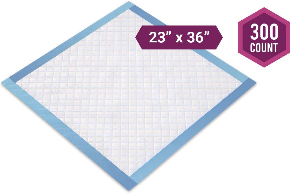 Healthy Spirit Disposable Underpad, 23 X 36 inch, 300 Count by Healthy Spirit