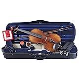Antonio Giuliani Violin Outfit