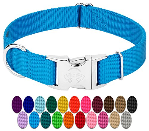 - Country Brook Petz - Premium Nylon Dog Collar with Metal Buckle - Vibrant 22 Color Selection (Large, 1 Inch Wide)