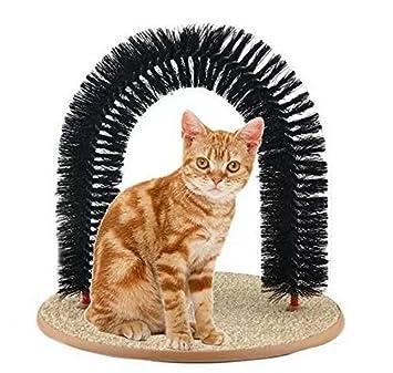 • RENZE Juguete del gato Purrfect gato de juguete Arco novio novio Auto Preparación del gato Auto Groomer y masajeador: Amazon.es: Productos para mascotas