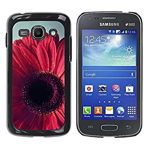 Be Good Phone Accessory // Dura Cáscara cubierta Protectora Caso Carcasa Funda de Protección para Samsung Galaxy Ace 3 GT-S7270 GT-S7275 GT-S7272 // Petal Floral Pink Purple