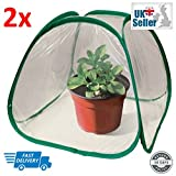 Pop Up Green House - Mini Pop Up Plant Cover Greenhouse (Pack of 2)