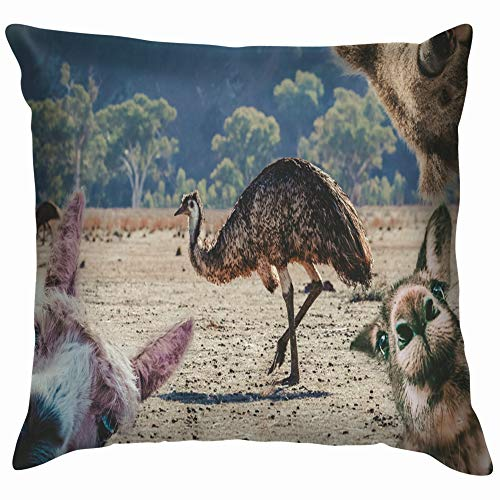 Collage Animals Living Australia Emu Koala Wildlife Funny Cotton Linen Home Decorative Throw Pillow Case Cushion Cover for Sofa Couch 12X12 Inch