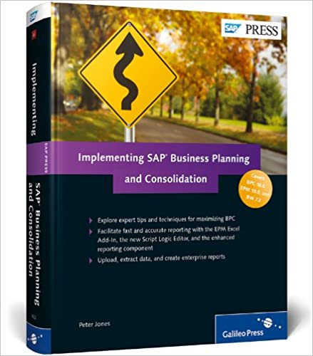 Pdf consolidation and sap planning business