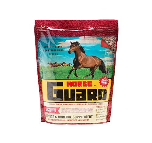 Horse Guard Equine Vitamin Mineral Supplement, 10lb (Best Muscle Building Supplements For Horses)