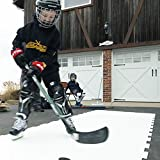 PolyGlide Synthetic Ice Home Kit
