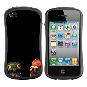 fashion Case for Apple iPhone 5s for kids / Funnny ORLY WTF Owl & Muppet