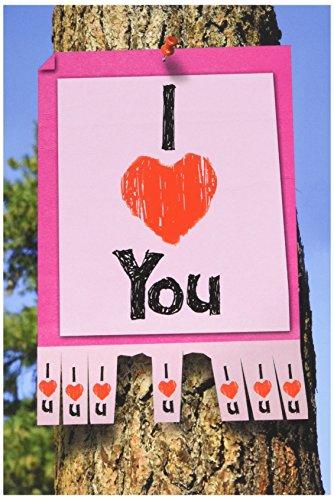 NobleWorks 2145 Valentines Unique Greeting