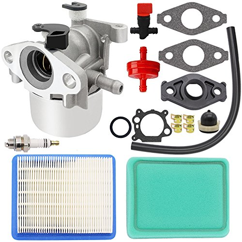 HOOAI Carburetor for Briggs Stratton 799866 790845 799871 796707 794304 Toro Craftsman Carb ()