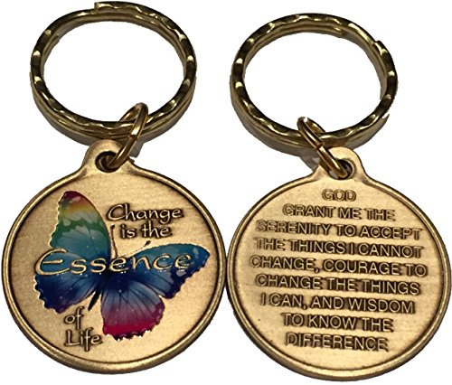 - Change Is The Essence of Life Rainbow Color Butterfly Serenity Prayer Bronze Keychain