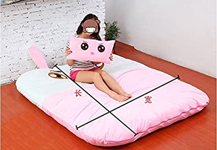 Amazon.com: Norson Animal Cartoon Series Sleeping Bags, Mattress for Kids, Super Soft Sofa Bed Twin Bed Double Bed Warm Cartoon Tatami Beanbag (Pig, ...