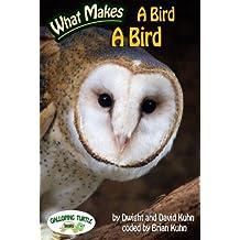 What Makes: A Bird a Bird