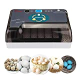 Egg Incubators for Hatching Eggs with Automatic Turner Poultry Hatcher Machine General Digital Incubators Breeder for Hatching Chicken Duck Goose Quail Birds Turkey(12-35 Eggs)