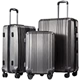 Coolife Luggage 3 Piece Sets PC+ABS Spinner Suitcase 20 inch 24 inch 28 inch (sliver gray3)