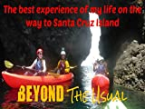 The best experience of my life on the way to Santa Cruz Island