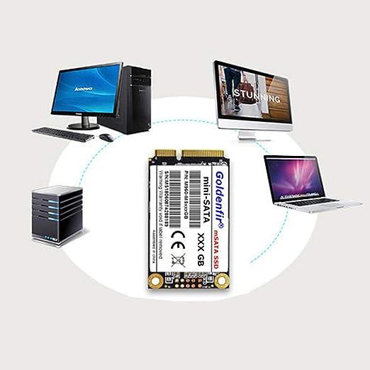 WLPT SSD mSATA, Disco de Estado sólido Interno SSD SATA III de 1TB ...