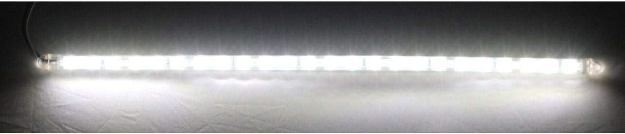 24-LED, 12.95 Truflex LED Custom Dynamics TF24WC Daytime Driving Light 12.95 Truflex LED